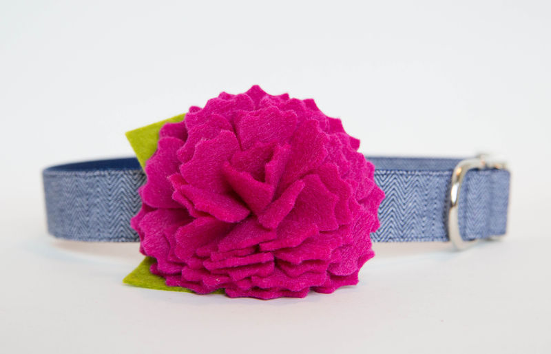 Flower Dog Collar -  Pink Peony Navy Herringbone - product images  of