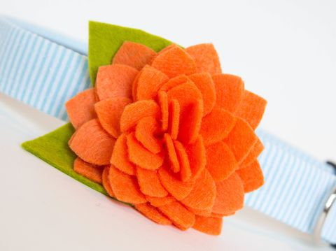 Flower,Dog,Collar,-,Orange,Dahlia,Seersucker,flower dog collar, dog collar flower, flower for dog collar, felt flower, wedding dog collar, fancy dog collar, unique, dog collar, flower, seersucker dog collar, seersucker