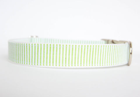 Seersucker,Dog,Collar,-,Apple,Green,seersucker dog collar, dog collar, southern dog collar, green, seersucker
