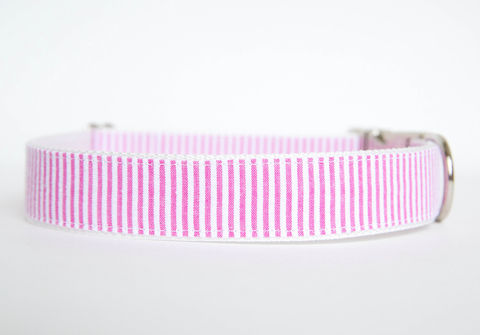 Seersucker,Dog,Collar,-,Hot,Pink,seersucker dog collar, dog collar, southern dog collar, pink, seersucker