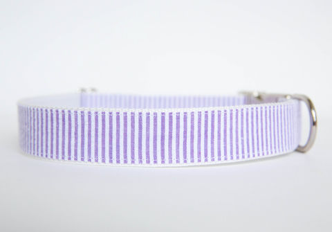 Seersucker,Dog,Collar,-,Purple,seersucker dog collar, dog collar, southern dog collar, purple, seersucker