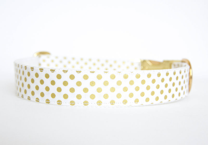 Polka Dot Dog Collar - Metallic Gold - product images  of