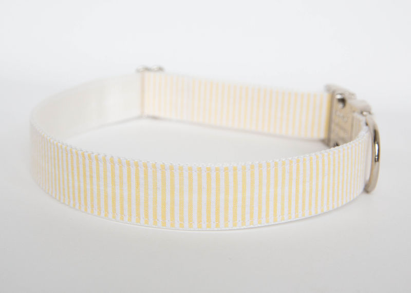 Seersucker Dog Collar - Yellow - product images  of