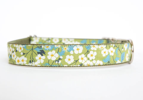 Liberty,of,London,Dog,Collar,-,Green,Daisies,liberty of london dog collar, dog collar, southern dog collar, floral dog collar, green