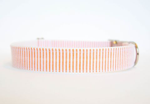 Seersucker,Dog,Collar,-,Orange,seersucker dog collar, dog collar, southern dog collar, striped dog collar, orange, clemson dog collar, clemson university dog collar, auburn dog collar, auburn university dog collar, clemson tigers dog collar, auburn tigers dog collar