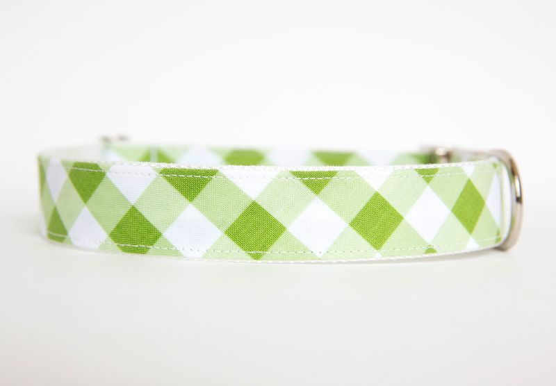 Gingham Dog Collar - Green - product images  of