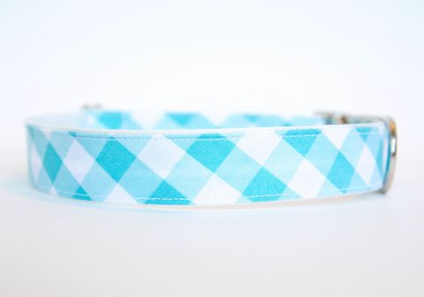 Gingham,Dog,Collar,-,Turquoise,gingham dog collar, plaid dog collar, dog collar, southern dog collar, check dog collar, turquoise