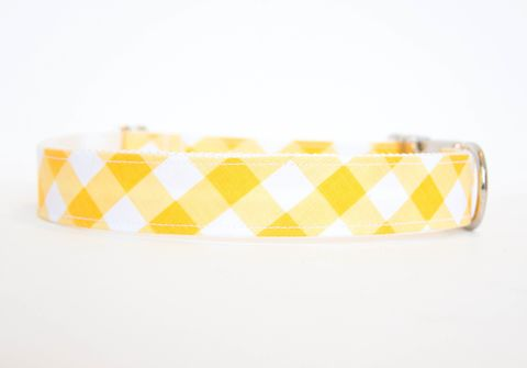 Gingham,Dog,Collar,-,Yellow,gingham dog collar, plaid dog collar, dog collar, southern dog collar, check dog collar, yellow