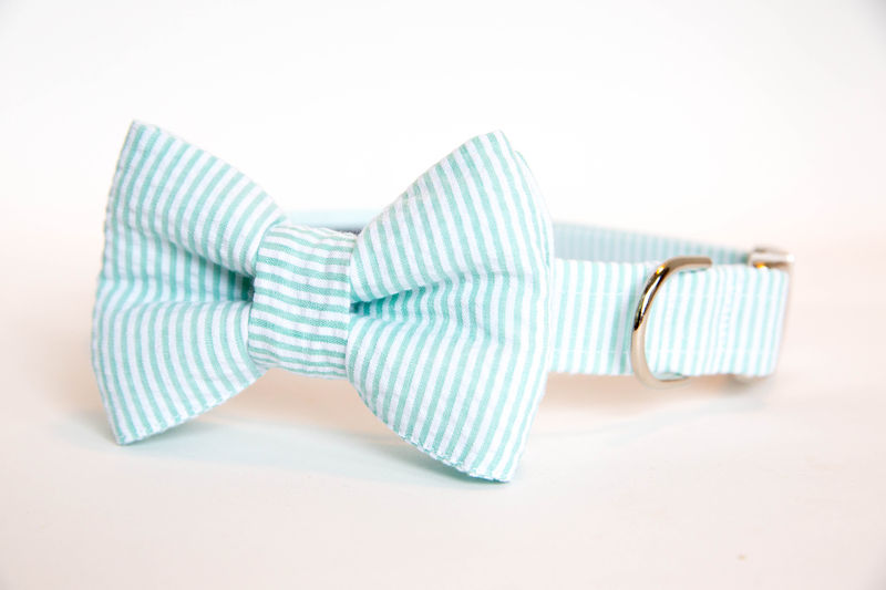 Dog Bow Tie Collar - Mint Seersucker - product images  of