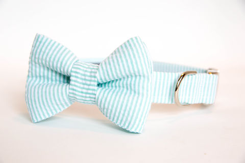 Dog,Bow,Tie,Collar,-,Mint,Seersucker,dog collar, dog bow tie, dog bowtie, bow tie dog collar, bowtie dog collar, wedding dog collar, mint, seersucker, seersucker dog collar