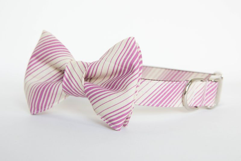 Dog Bow Tie Collar - Plum & Ivory Stripe - product images  of