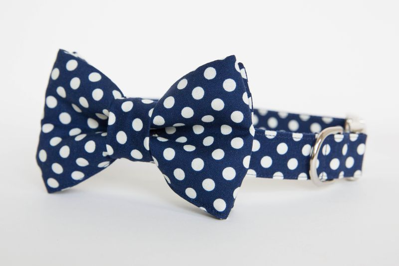 Dog Bow Tie Collar - Navy Polka Dot - product images  of
