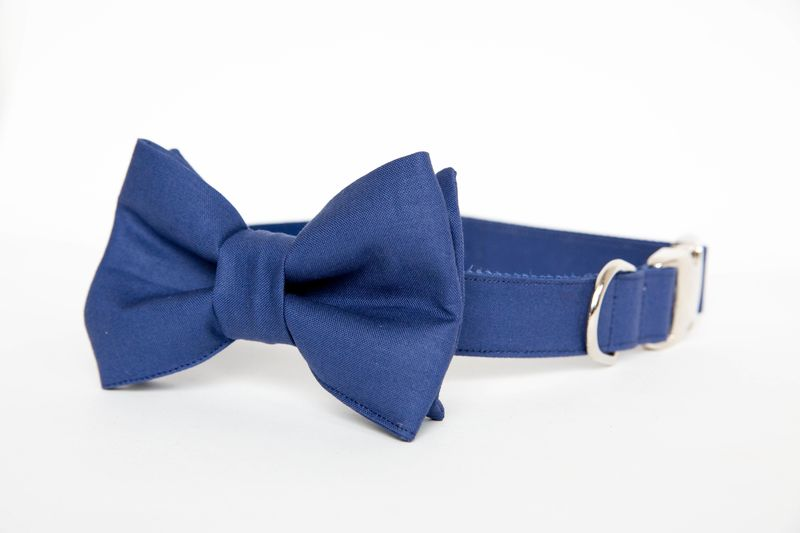 Dog Bowtie Collar - Navy Gentleman's Collar - product images  of