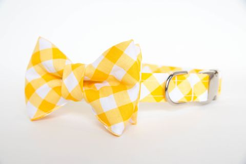Dog,Bowtie,Collar,-,Yellow,Gingham,dog collar, dog bow tie, dog bowtie, bow tie dog collar, bowtie dog collar, gingham dog collar, gingham, yellow, wedding dog collar