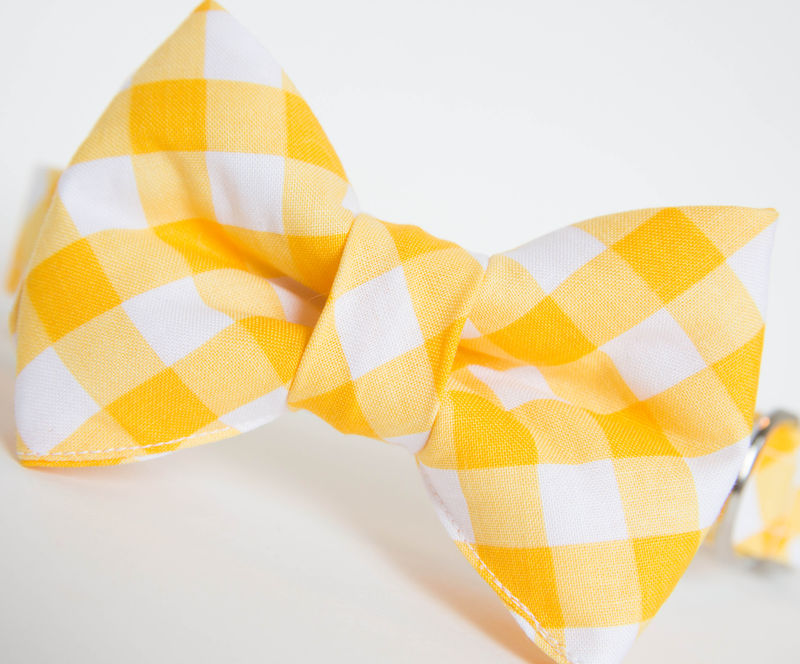 Dog Bowtie Collar - Yellow Gingham - product images  of