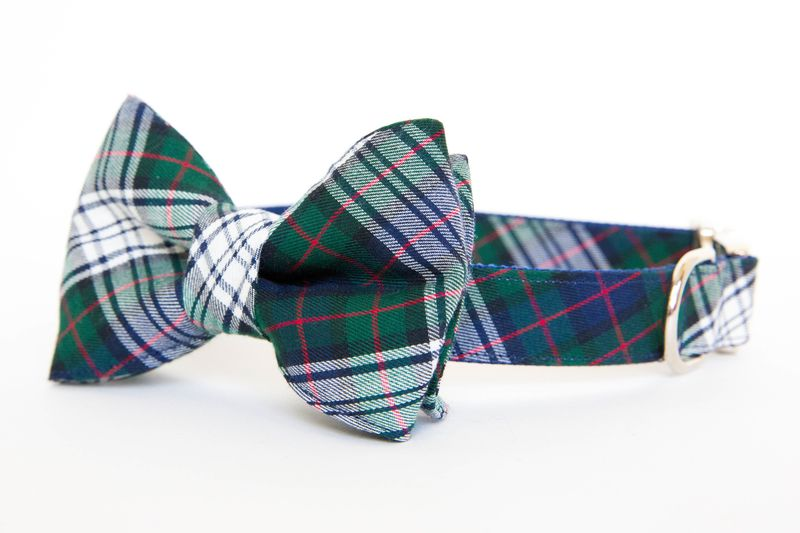 Classic Navy Tartan Bowtie Collar - product images  of
