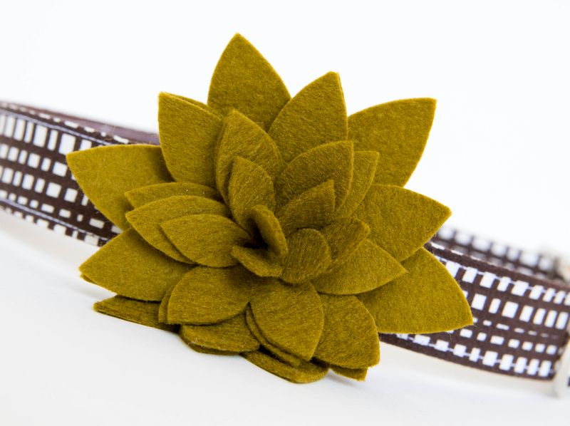Flower Dog Collar -  Autumn Aloe - product images  of