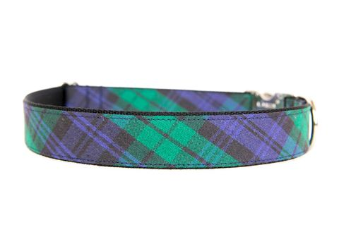 Blackwatch,Plaid,Dog,Collar,plaid dog collar, navy, blue, tartan dog collar, dog collar, southern dog collar, blue dog collar, nickel hardware, silver hardware