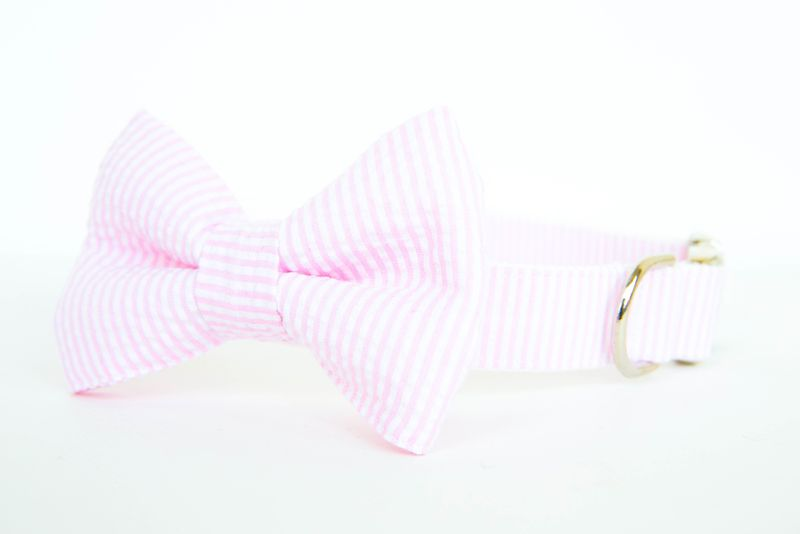 Pale Pink Seersucker Dog Bowtie Collar - product image