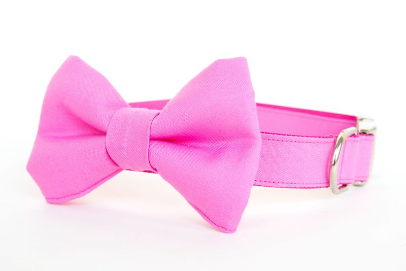 Bubblegum Pink Bowtie Dog Collar - product images  of