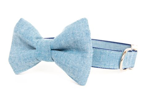 Light,Chambray,Bowtie,Dog,Collar,dog collar, dog bow tie, dog bowtie, bow tie dog collar, bowtie dog collar, chambray, denim