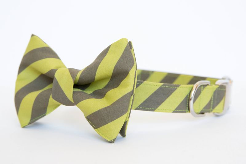 Olive & Apple Academy Stripe Bowtie Dog Collar - product images  of