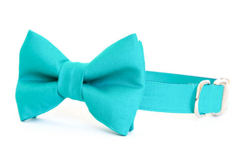 Teal,Gentleman's,Bowtie,Dog,Collar,dog collar, dog bow tie, dog bowtie, bow tie dog collar, bowtie dog collar, teal