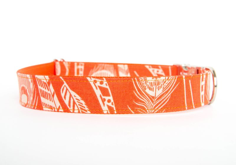Feathered Fido Dog Collar in Orange - product images  of
