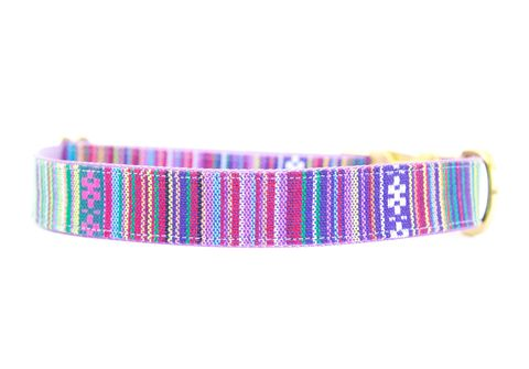 Rainbow,Serape,Dog,Collar,serape, woven, gold, serape dog collar