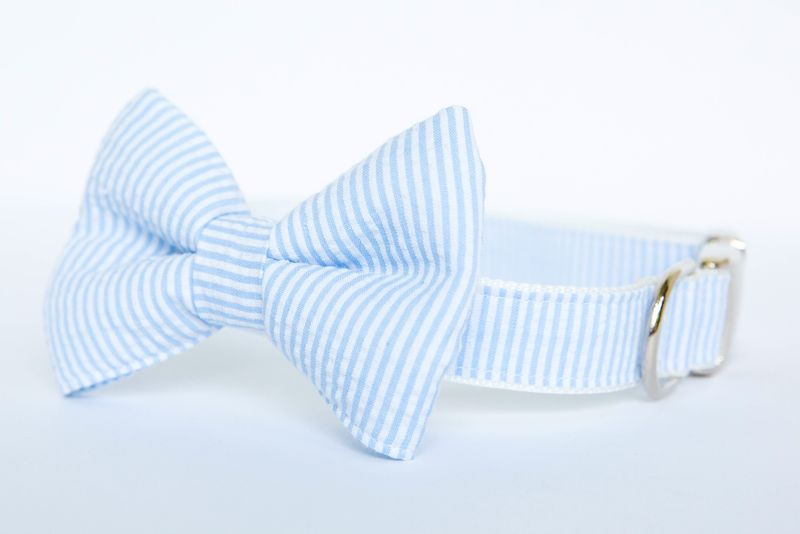 Dog Bow Tie Collar - Light Blue Seersucker - product images  of