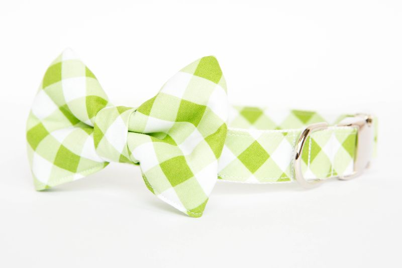 Dog Bowtie Collar - Green Gingham - product images  of