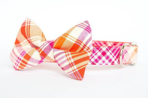 Summer,Plaid,Bow,Tie,Dog,Collar,-,Pink,&,Orange,dog collar, dog bow tie, dog bowtie, bow tie dog collar, bowtie dog collar, plaid, tartan