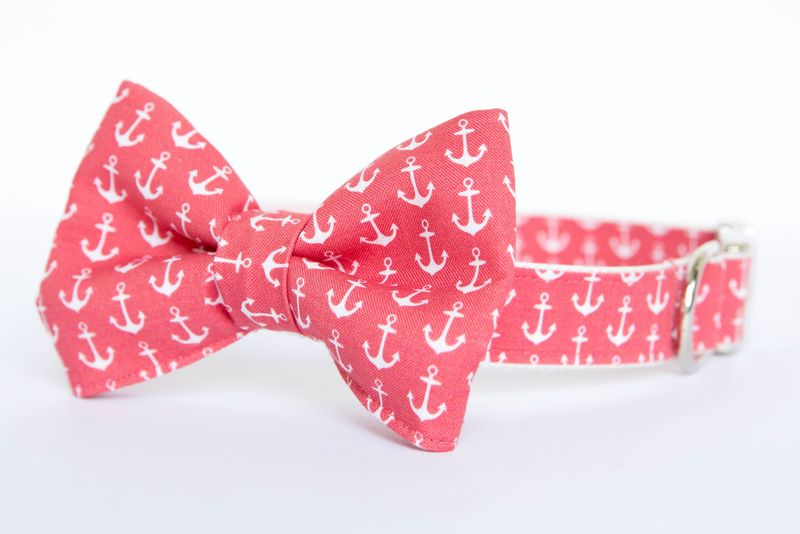 Bow Tie Dog Collar - Coral Red Anchors - product images  of