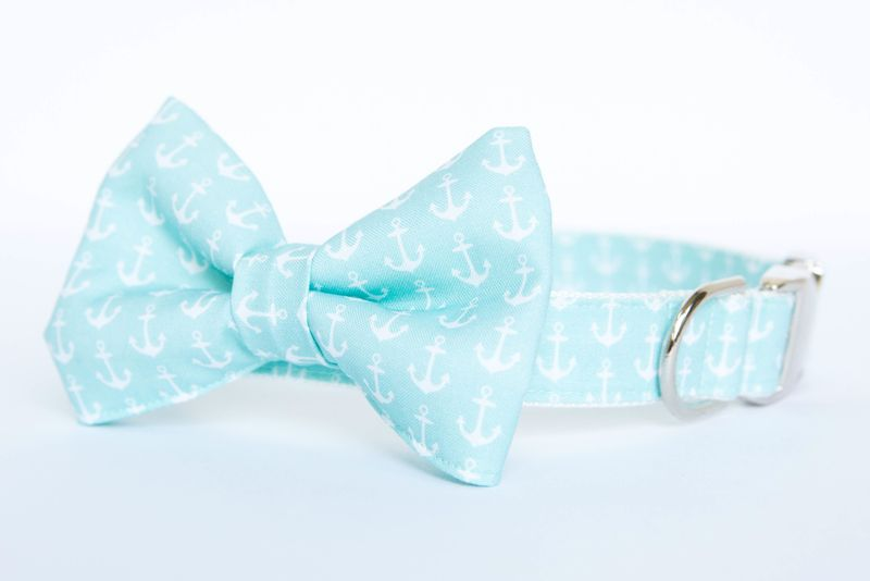 Bow Tie Dog Collar - Pale Turquoise Anchors - product images  of