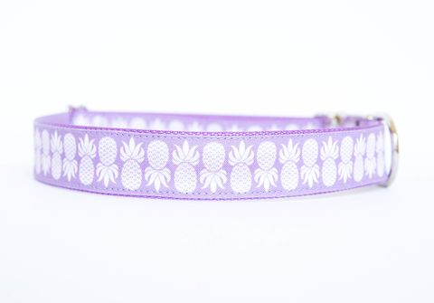 Pineapple,Dog,Collar,in,Purple,dog collar, pineapple, nickel hardware, southern dog collar, purple, lavender