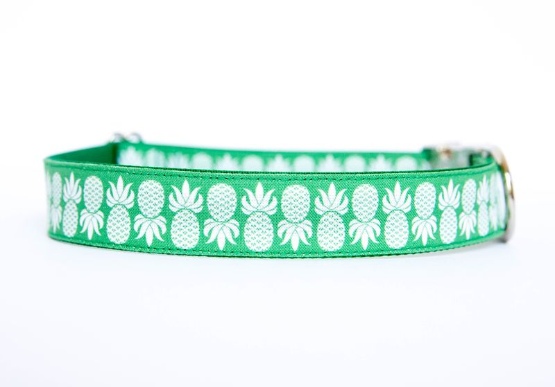 Pineapple Dog Collar in Green - product images  of