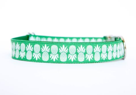 Pineapple,Dog,Collar,in,Green,dog collar, pineapple, nickel hardware, southern dog collar, green, kelly green, emerald