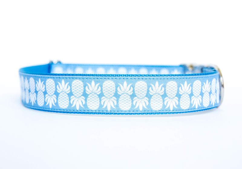 Pineapple Dog Collar in Blue - product images  of
