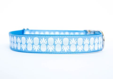 Pineapple,Dog,Collar,in,Blue,dog collar, pineapple, nickel hardware, southern dog collar, blue