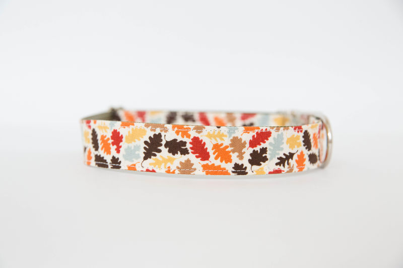Bowtie Dog Collar - Autumn Leaves - product images  of
