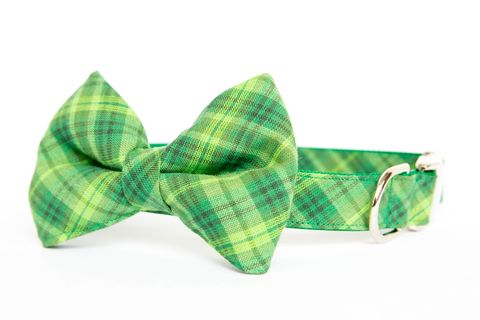 Dog,Bow,Tie,Collar,-,Shamrock,Plaid,dog collar, dog bow tie, dog bowtie, bow tie dog collar, bowtie dog collar, green, plaid, check, gingham