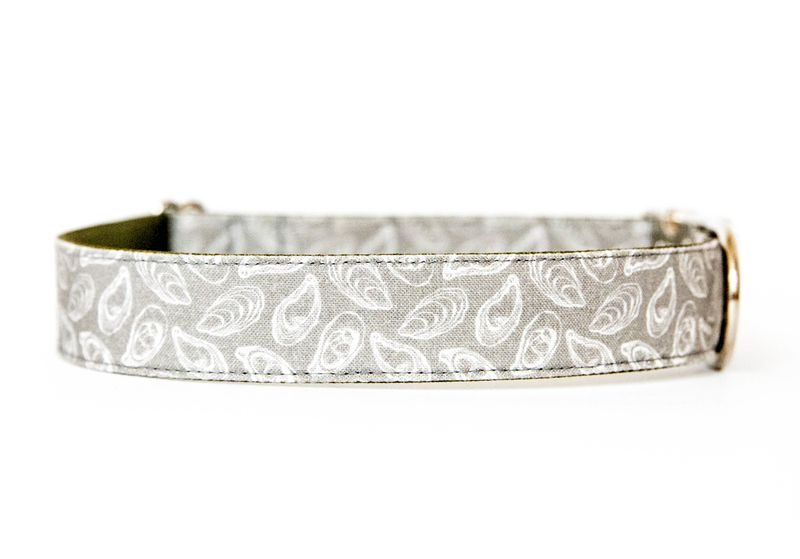 Oyster Roast Dog Collar in Pluff Mud - product images  of