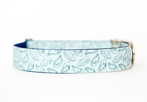 Oyster,Roast,Dog,Collar,in,Sky,Blue,dog collar, southern dog collar, oyster, oyster roast, blue, beach dog collar