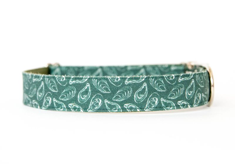 Oyster Roast Dog Collar in Atlantic Green - product image