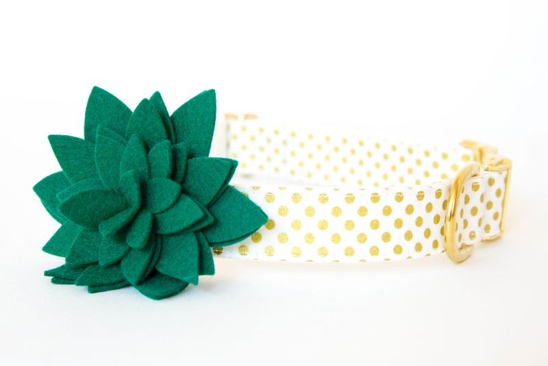Flower Dog Collar -  Emerald Blossom on Gold Polka Dots - product images  of