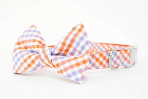 Clemson,University,Plaid,Bowtie,Dog,Collar,dog collar, dog bow tie, dog bowtie, bow tie dog collar, bowtie dog collar, stripes, clemson, tigers, orange, purple