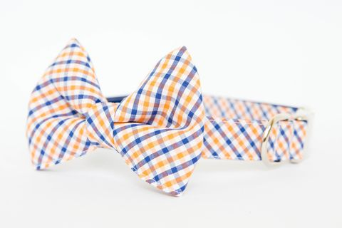 Orange,and,Blue,Gingham,Bowtie,Dog,Collar,dog collar, dog bow tie, dog bowtie, bow tie dog collar, bowtie dog collar, gingham, sec dog collar, acc dog collar, auburn tigers, florida gators, blue, orange