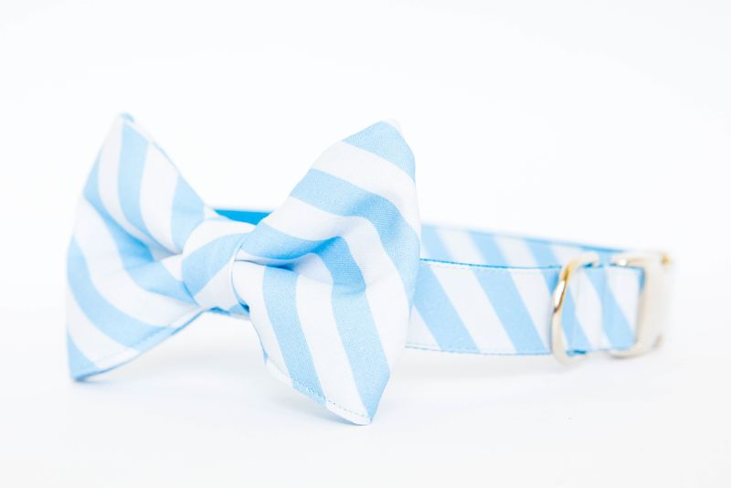 North Carolina Tarheels Striped Bowtie Dog Collar - product images  of