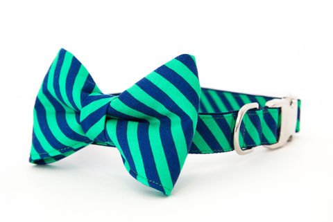 Notre,Dame,Striped,Bowtie,Dog,Collar,dog collar, dog bow tie, dog bowtie, bow tie dog collar, bowtie dog collar, stripes, acc dog collar, notre dame dog collar, fighting irish dog collar, navy, kelly green
