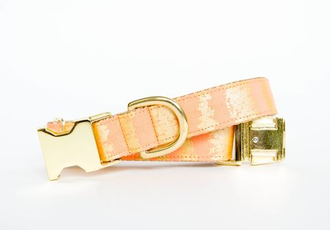 Peach,and,Gold,Sketch,Dog,Collar,gold dog collar, metallic, peach dog collar, peach and gold dog collar, metallic gold, orange dog collar